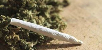 adolescent marijuana use increases risk