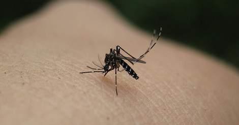 Zika Virus in Columbia