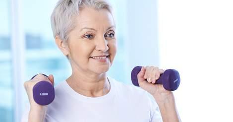 Muscle Fibers