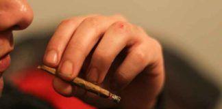cannabis may