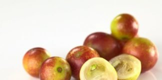 camu camu weight loss