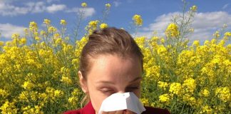 treat spring allergies