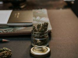 how cannabis affects the brain