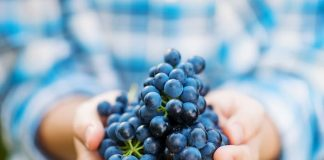 resveratrol for depression and anxiety