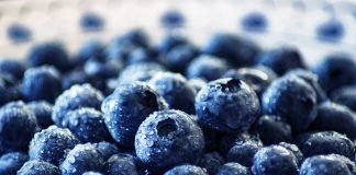 can blueberries improve aging and health