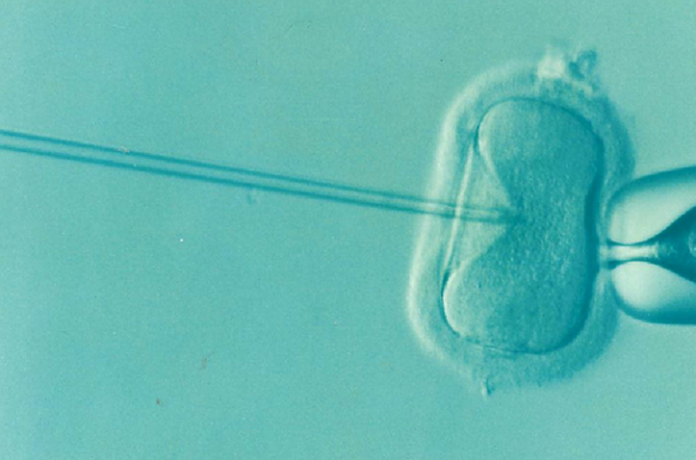 fatherhood through assisted reproduction