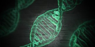 genes linked to high cholesterol