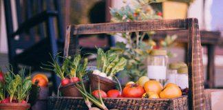 plant-based diet for rheumatoid arthritis