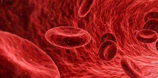cure for neurodegenerative diseases