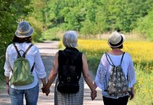 menopause and heart disease risk