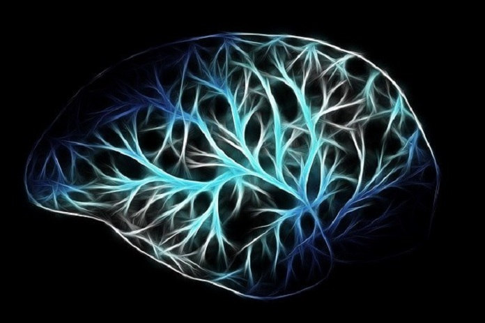 bilingualism protects against dementia