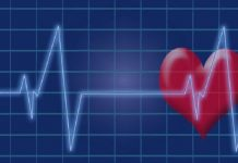 link between heart health and brain health