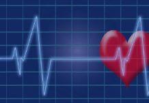 link between heart health and brain health