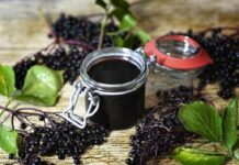 elderberry for flu