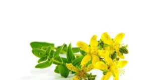 St John's Wort for depression