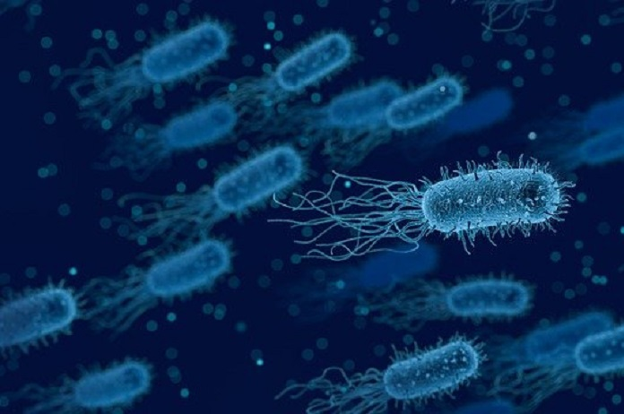 how long does it take for antibiotics to work