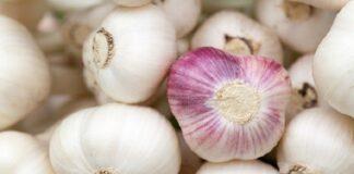 is garlic good for coronavirus