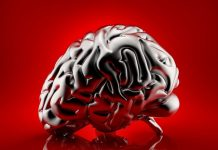 what is a memory supplement