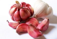 top 7 health benefits of garlic