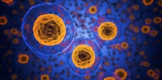 how does immunotherapy work